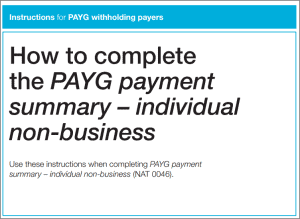 PAYG payment summary instructions